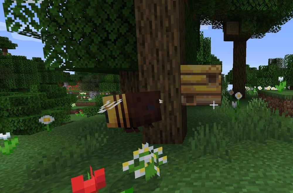 Где найти мед в игре Майнкрафт